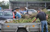 Abfallwirtschaft Kleinanlieferung Grünabfall Herbst